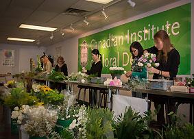 Floral Design Schools Certified Floral Design Program Cifd